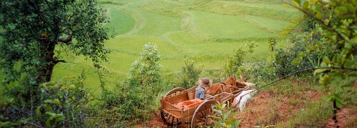 Der Osten Myanmars – Vom Inle-See bis zu den Grenzmärkten